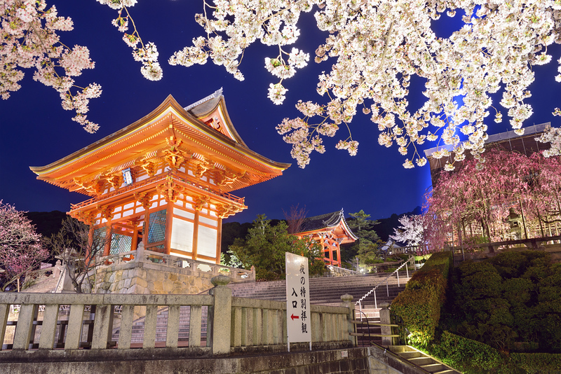 Kiyomizu-dera Temple in the evening during cherry blossom season. Editorial credit: Sean Pavone / Shutterstock.com