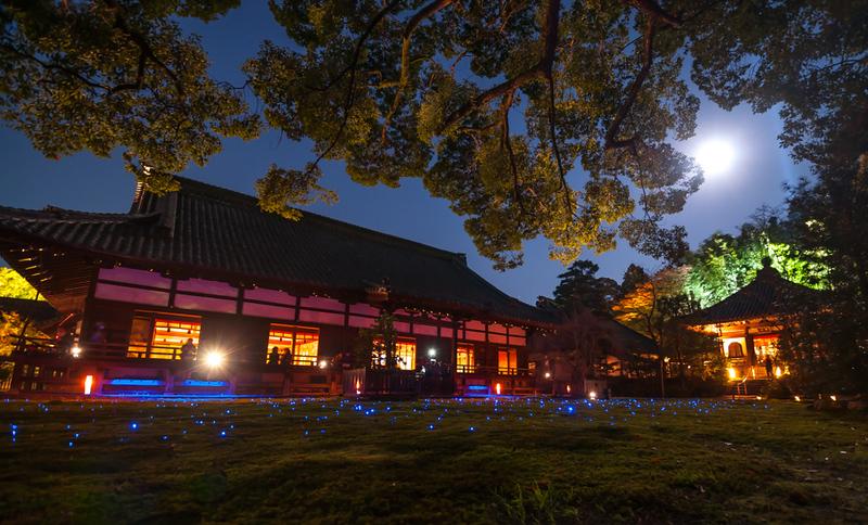 Shoren-in Temple during evening light up. Editorial credit: MyPixelDiaries / Shutterstock.com