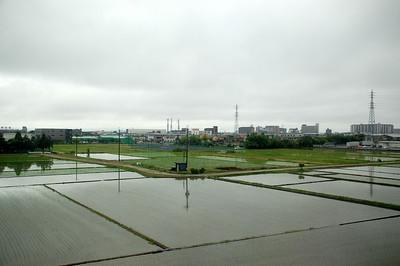 Paddy Fields viewed from the Shinkansen