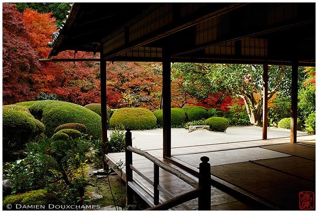 Shisen-do Temple garden : copyright Damien Douxchamps