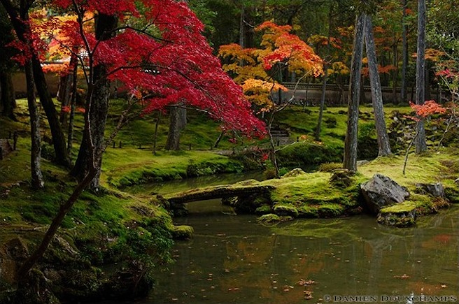 "Koke-dera (Saiho-ji or ""Moss"") Temple, Kyoto : copyright Damien Douxchamps"