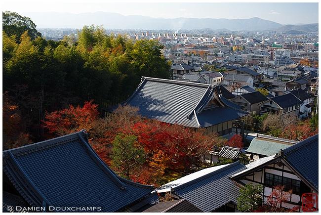 Enko-ji Temple from above : copyright Damien Douxchamps
