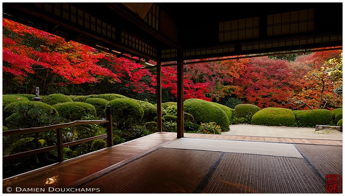 Shisen-do Temple garden with fall foliage : copyright Damien Douxchamps