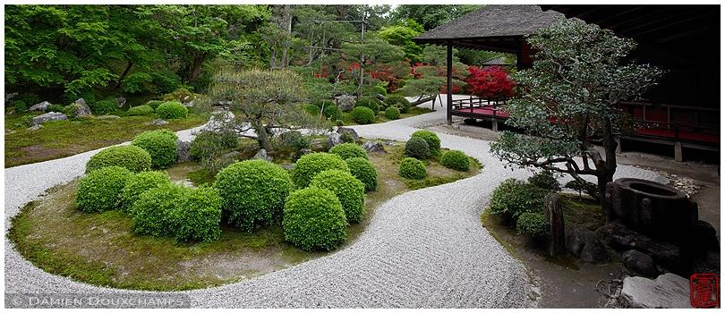 Manshu-in Temple garden : copyright Damien Douxchamps