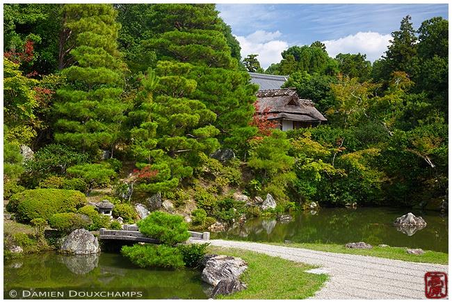 Ninna-ji Temple image copyright Damien Douxchamps