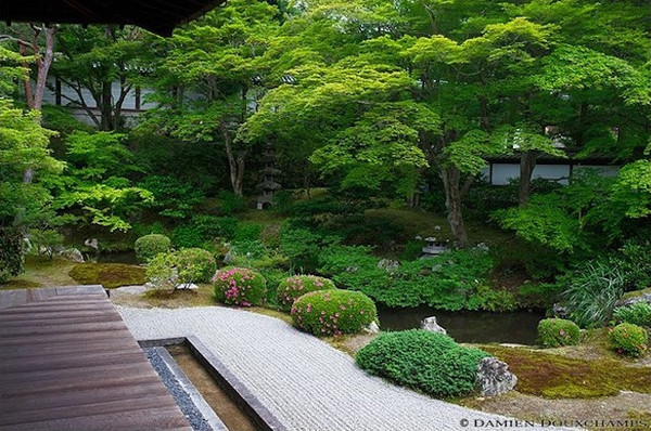 Sennyu-ji Temple, Kyoto : copyright Damien Douxchamps