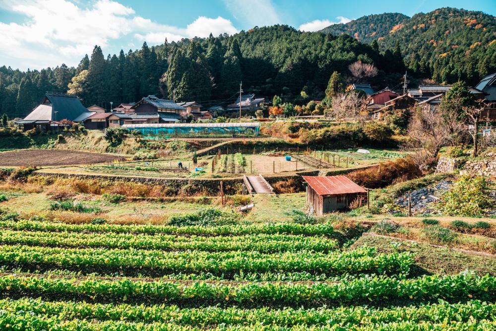 Ohara Village. Editorial credit: Sanga Park / Shutterstock.com