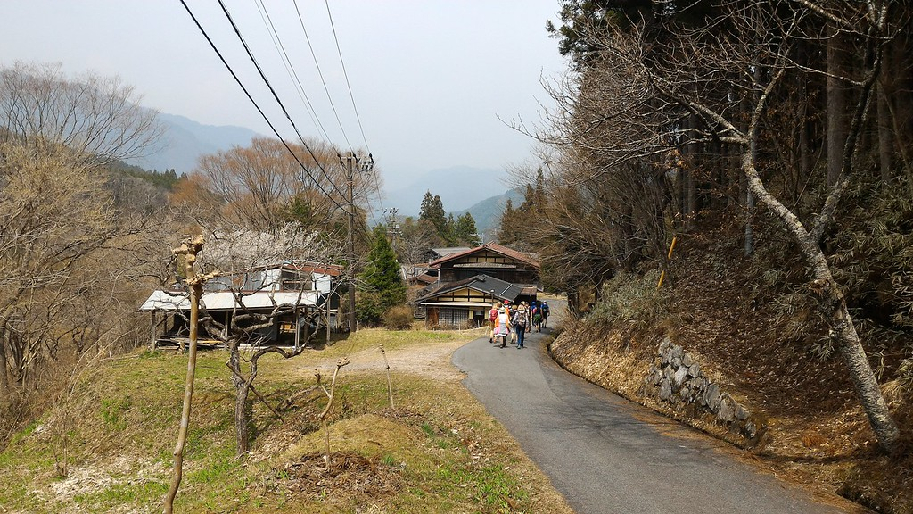 Descending Toward Tsumago