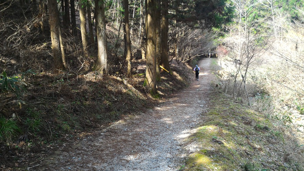 Trail Below Magome-toge Pass