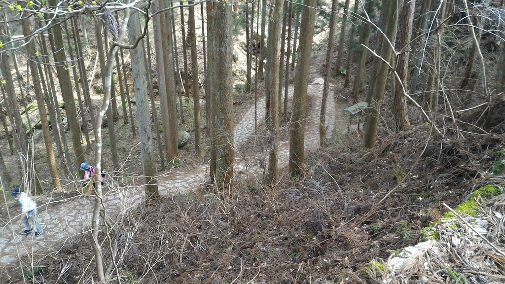 Descending Steeply to Tsumago
