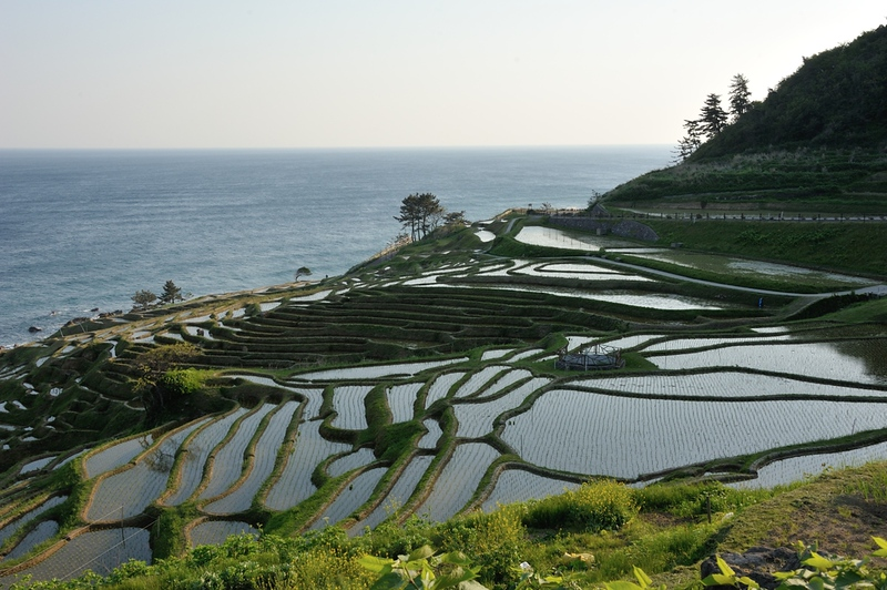 Senmaida rice terraces near Wajima. Editorial credit: PADA NETWORK / Shutterstock.com