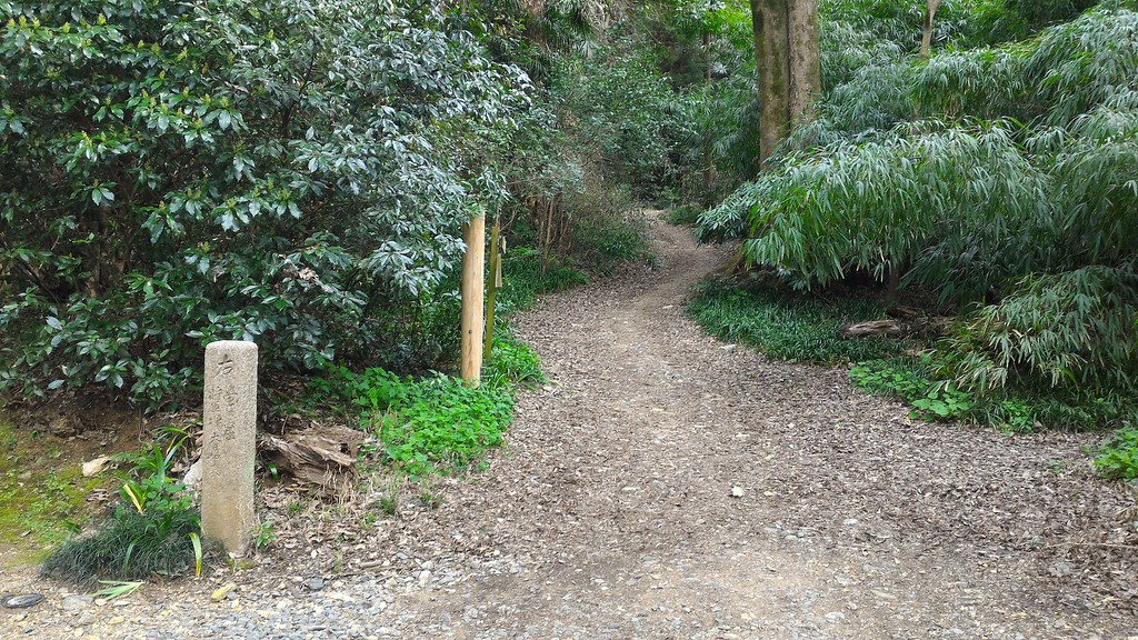 Trail to Shogunzuka