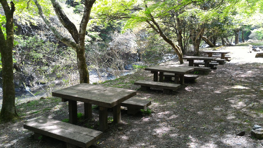 Picnic Tables at Lunch Spot