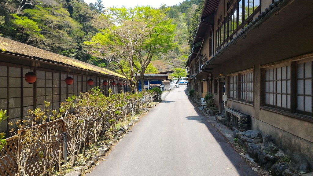 Road to Saimyo-ji Temple