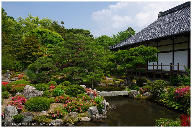Toji-in Temple - Northwest Kyoto image copyright Damien Douxchamps