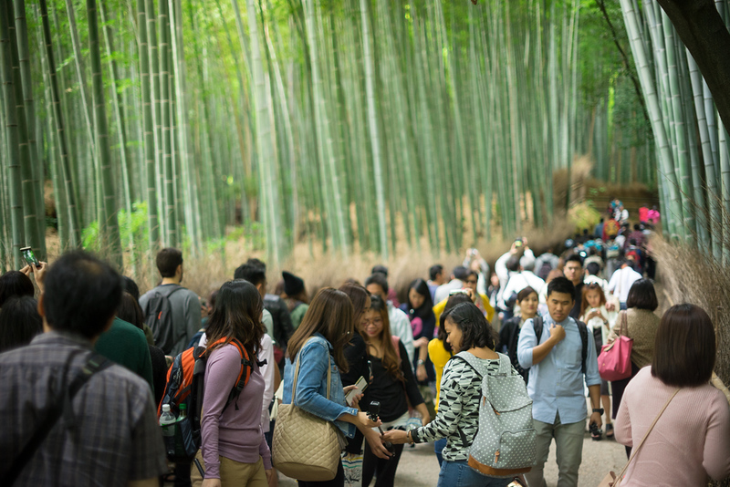 Arashiyama Bamboo Grove with crowd. Editorial credit: xerazed / Shutterstock.com