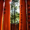 Fushimi Columns