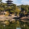 Pagoda at Kofukuji Temple.