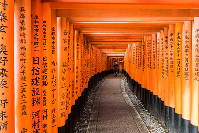 Torii gates at Fushimi Inari Shrine.