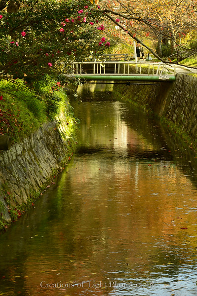 Kyoto in Fall Color  241