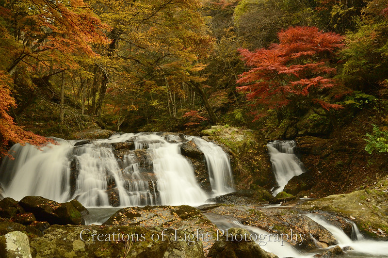 Kyoto in Fall Color  129