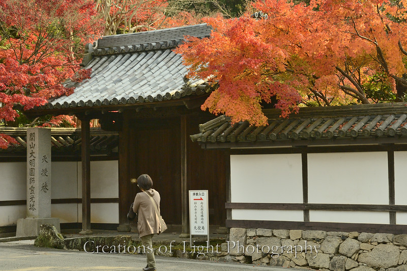Kyoto in Fall Color  176