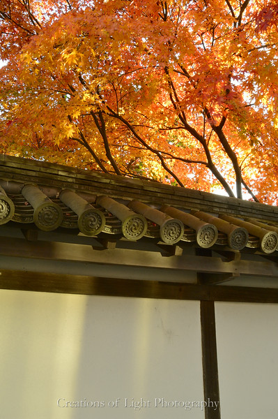 Kyoto in Fall Color  206