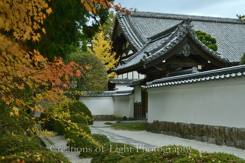 Kyoto in Fall Color  218