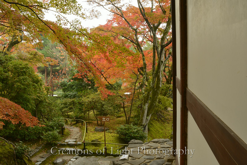 Kyoto in Fall Color  132
