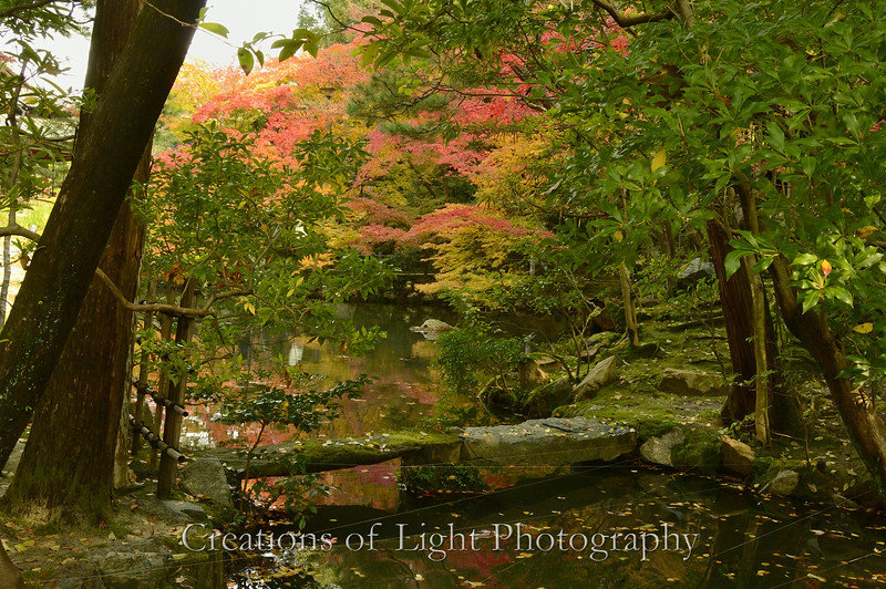 Kyoto in Fall Color  163
