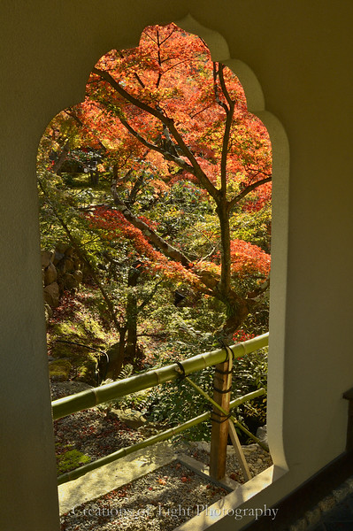 Kyoto in Fall Color  221