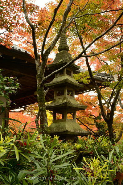 Kyoto in Fall Color  136