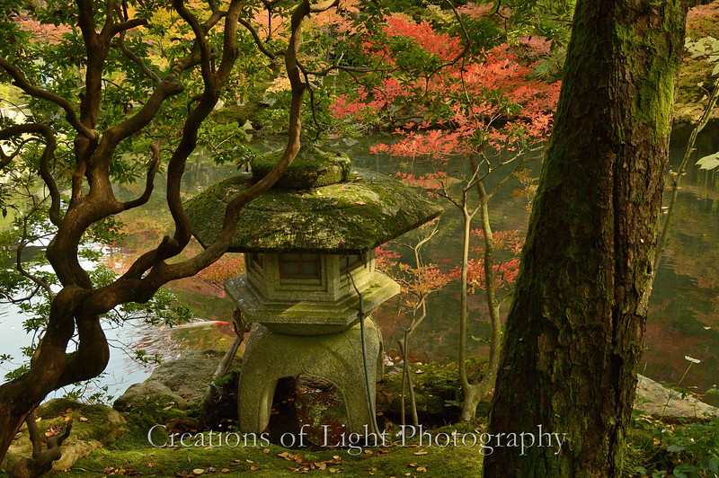 Kyoto in Fall Color  166