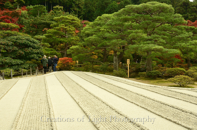 Kyoto in Fall Color  181