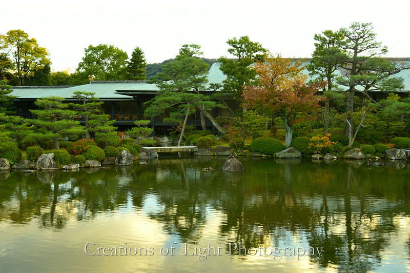 Kyoto in Fall Color  250