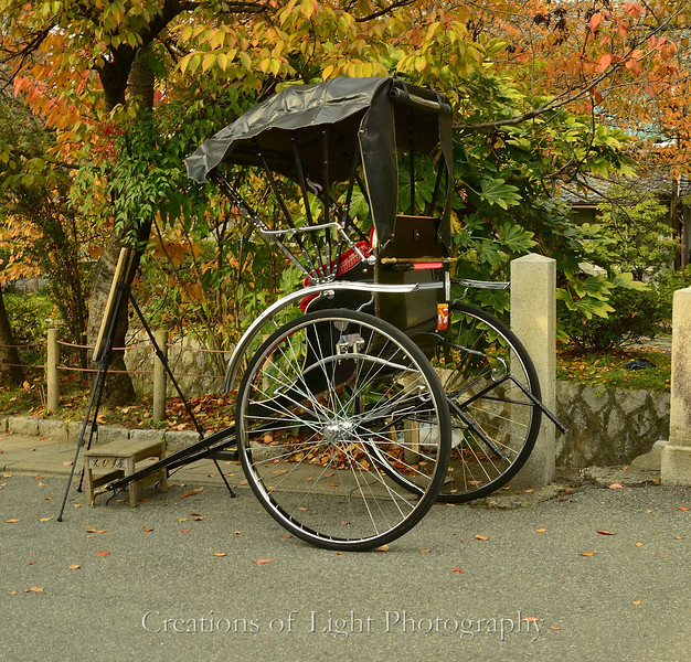 Kyoto in Fall Color  178
