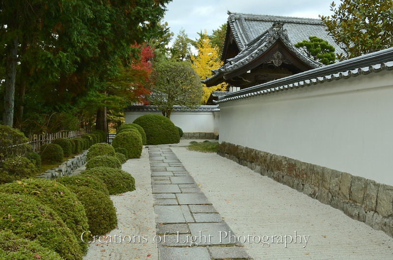 Kyoto in Fall Color  217