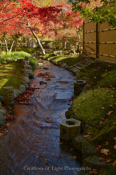 Kyoto in Fall Color  231