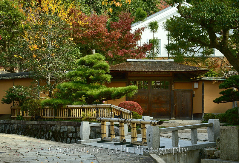 Kyoto in Fall Color  235