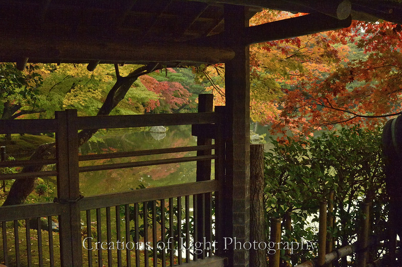 Kyoto in Fall Color  154
