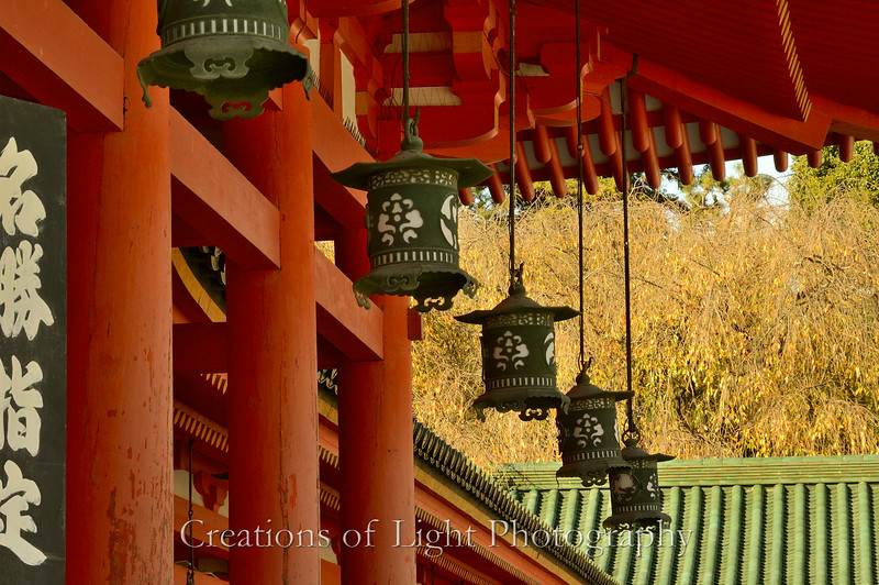 Kyoto in Fall Color  246