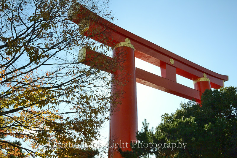 Kyoto in Fall Color  244
