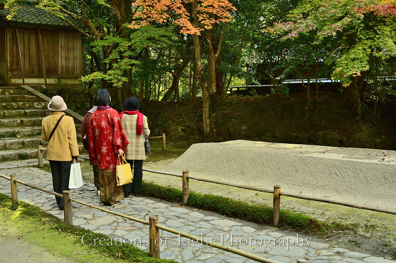 Kyoto in Fall Color  238
