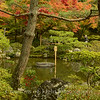 Kyoto in Fall Color  182