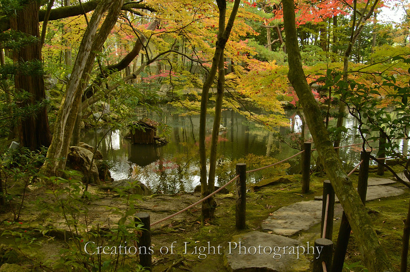 Kyoto in Fall Color  159