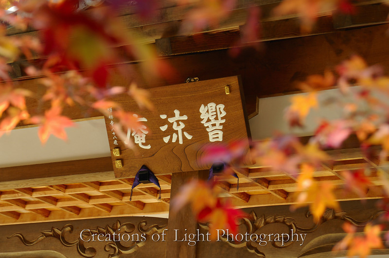Kyoto in Fall Color 077