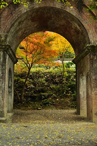 Kyoto in Fall Color 062