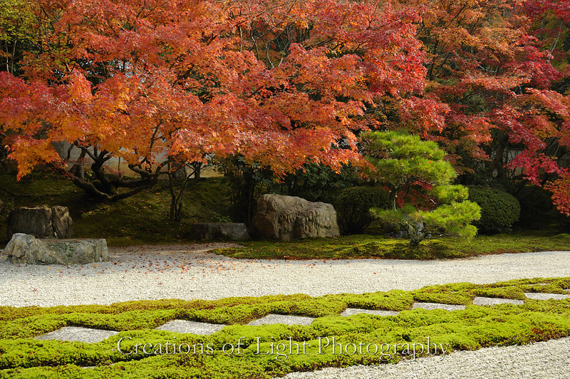 Kyoto in Fall Color 028
