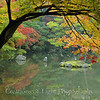 Kyoto in Fall Color 019