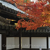 Kyoto in Fall Color 059